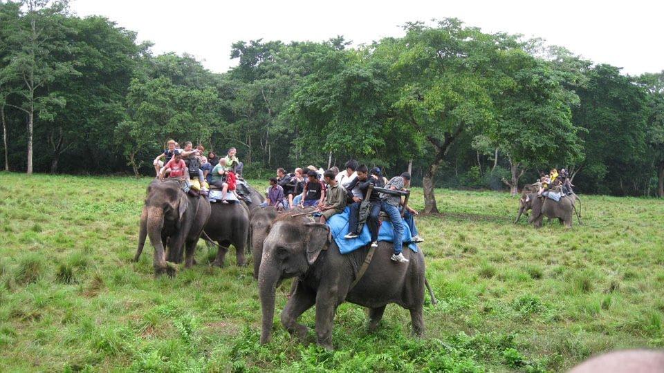 Chitwan Village Tour