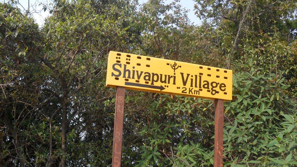 Shivapuri Trekking