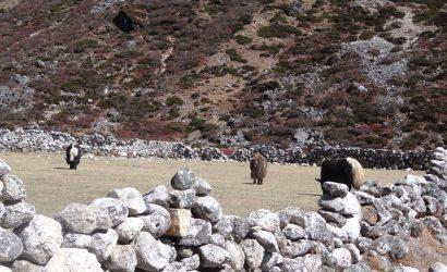 Luxury Everest Base Camp Trekking