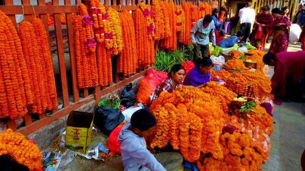 Tihar Festival on October